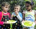 Vitaminbomben für die Kids